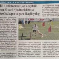 L'articolo pubblicato sul Giornale dell'Umbria il 26 giugno 2013.